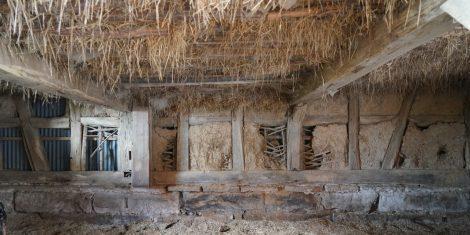 Strohschüttungen, Zwischendecken aus organischen Isolierstoffen oder Fachwerkhäuser mit Stroh-/Lehmausfachungen sind der ideale Lebensraum für den Messingkäfer