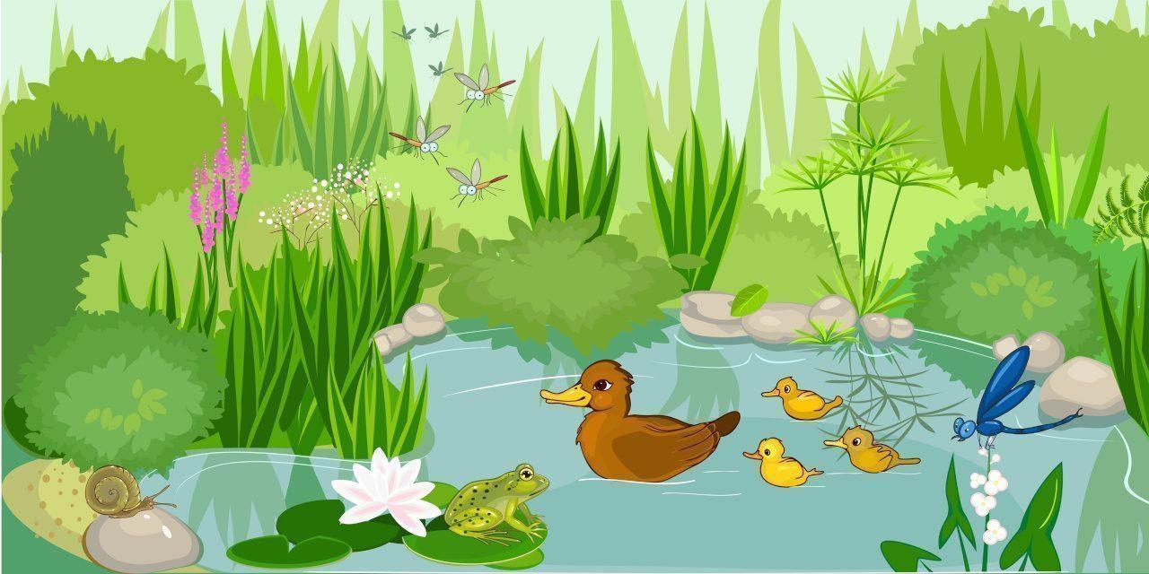 Biozönose: Gemeinschaft von Lebewesen in einem bestimmten Lebensraum